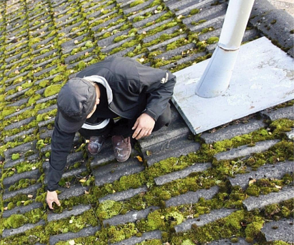 ALUSSA. Voimakas sammaloituminen on vaaran merkki, johon kiinteistönomistajan on reagoitava nopeasti. Vain sammaleesta puh- das katto on terve katto.