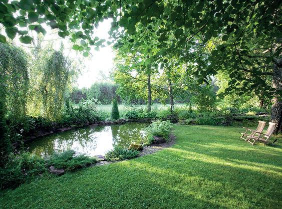 Pihasuunnittelu - allas ja nurmikko