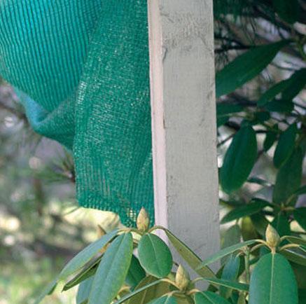 kasvien suojaaminen