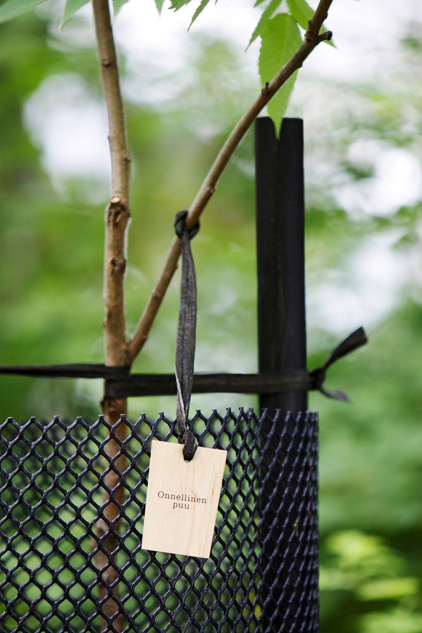 Puun varusteet –setissä saat yhdessä pakkauksessa kaiken tarvittavan tuen ja suojan, jonka nuori puu tarvitsee juurtuakseen ja kasvaakseen.