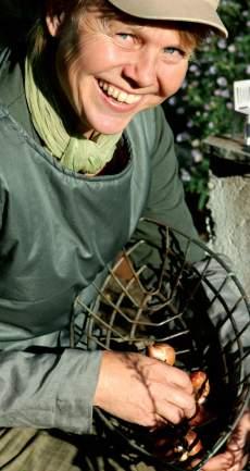 Raija Puukon puutarhassa Järvenpäässä japanilainen pienoismaisema kohoaa peltiastiasta ja koivunrisuista punotut linnunpesät ehostavat kukkapenkkiä.