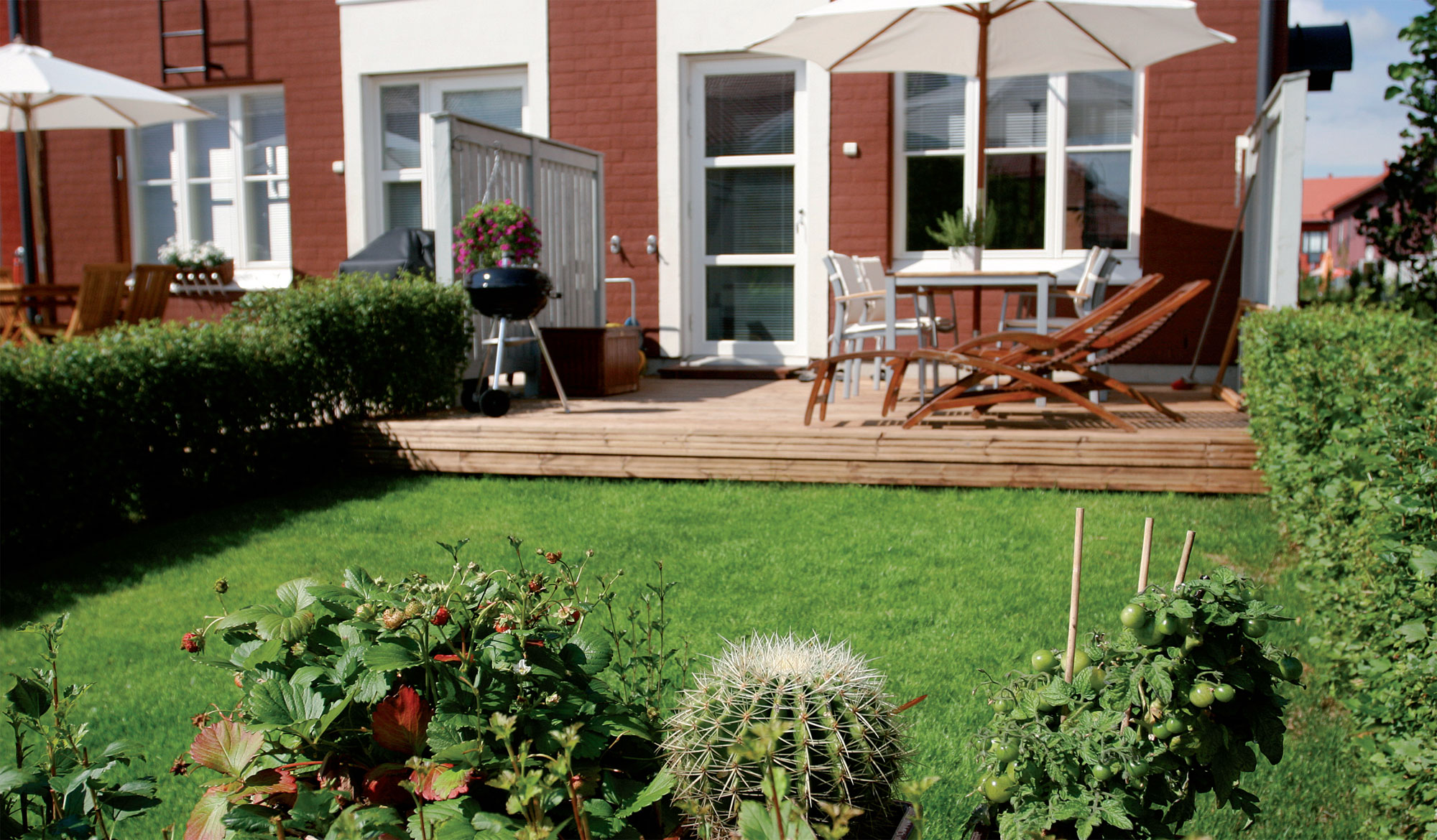 Pieneen tilaan mahtuu useita elementtejä: oleskelupatio, ruukkupuutarha koriste- ja hyötykasveineen sekä lattian virkaa toimittava tuuhea nurmikko.