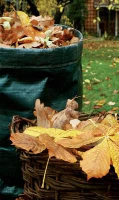 Korit ja kuitukankaiset keräysastiat ovat käteviä etenkin pikkupihalla.