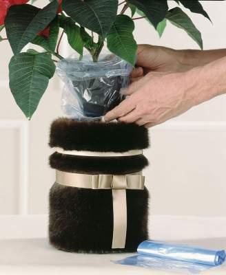 Laita joulutähtiruukku pieneen muovipussiin, jotta kosteus ei pääse karkaamaan.