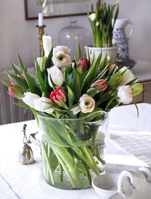 Tulppaanit maljakossa