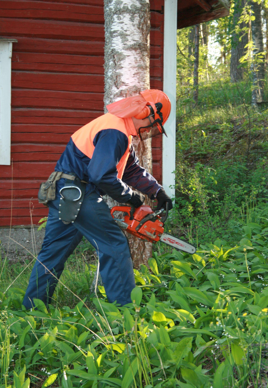 Muista puuta kaataessasi suojavarusteet