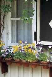 Lasse Partasen kehittämä ikkunahyllykkö ulkokukille