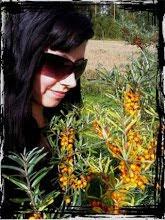 Heidi bloggaa mökkielämästä ja omavaraisesta hyötyviljelystä