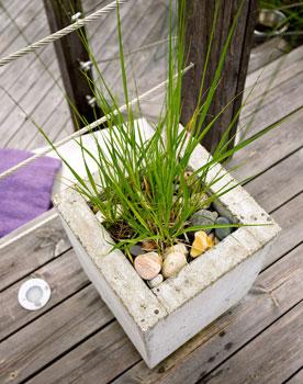 Myös erilaiset heinät, laventeli ja mehikasvit ovat puutarhan suosikkeja.