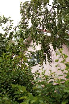 Janne Katajan perheen vaaleanpunaisessa talossa ovat viihtyneet aikoinaan myös Riihimäen patruuna, ylilääkäri ja sota-ajan synnyttäjätkin.