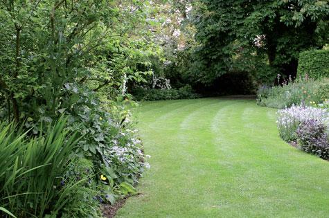 Mutkitteleva nurmikko johtaa tontin pohjoispäädyssä kohti leveälatvaista hevoskastanjaa. Nurmikon reunoja hoidetaan kanttaamalla.