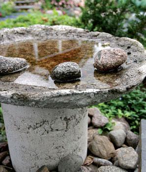Betonista valettu yksinkertainen allas sopii hyvin lintujen juoma-altaaksi.