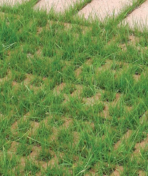 Ajan saatossa reikäkiviä ei juurikaan erota nurmiheinien alta.