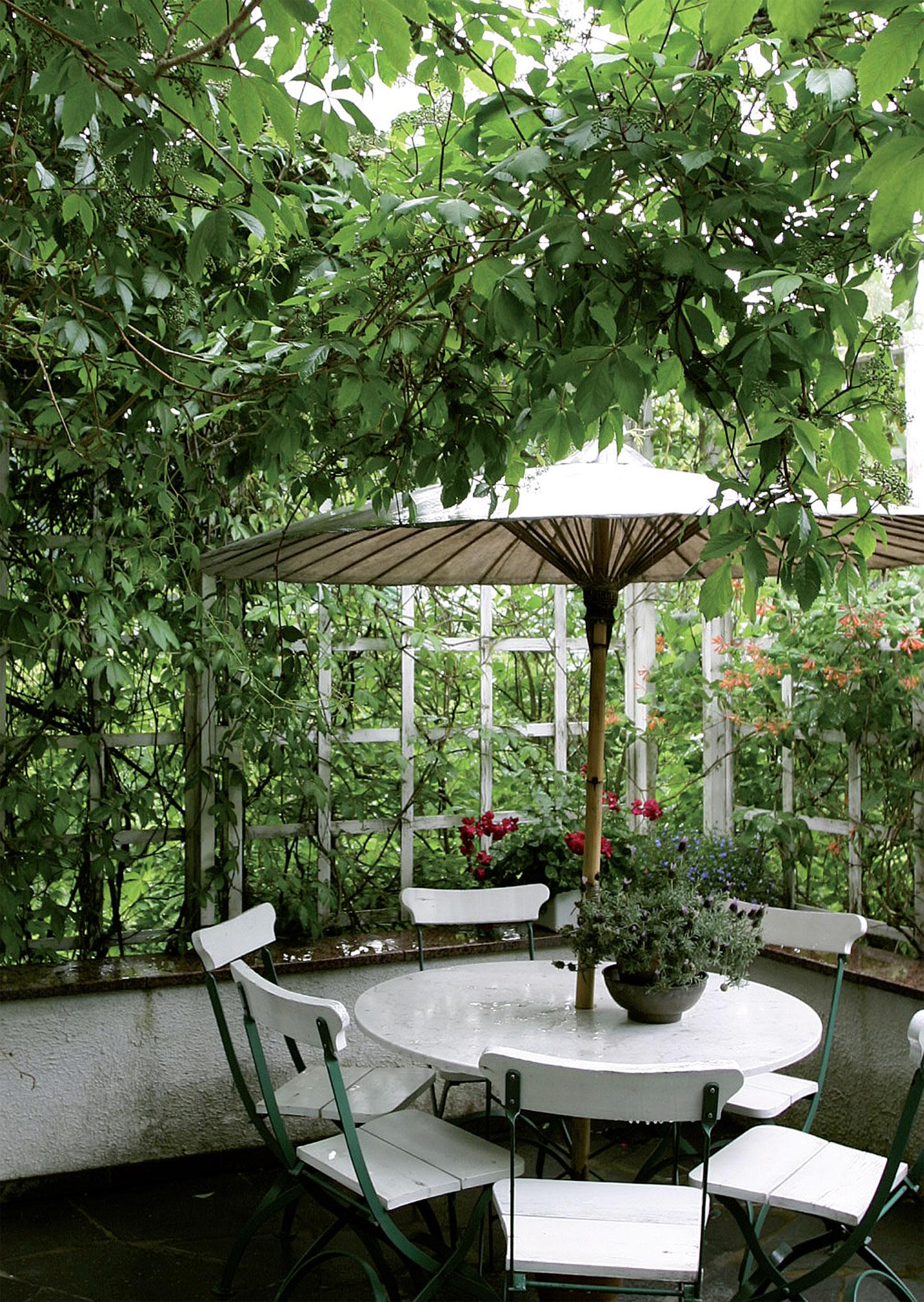 Katseilta suojaisan pation kattona on säleikkövilliviini, seinää koristaa oranssi tuliköynnöskuusama.