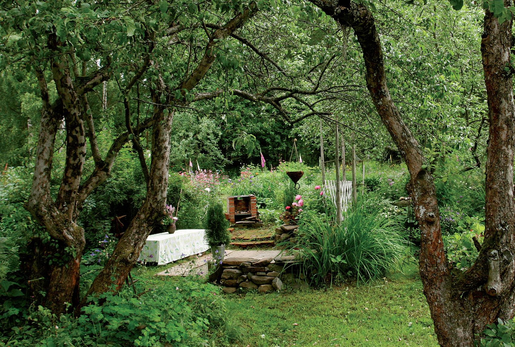Grilli- ja ruokailupaikka sijaitsee kasvillisuuden suojassa.