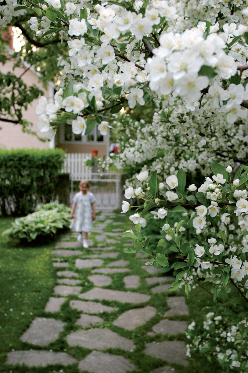 Kookkaat kukkapensaat luovat kukkiessaan kutsuvan tunnelman puutarhaportillesi.