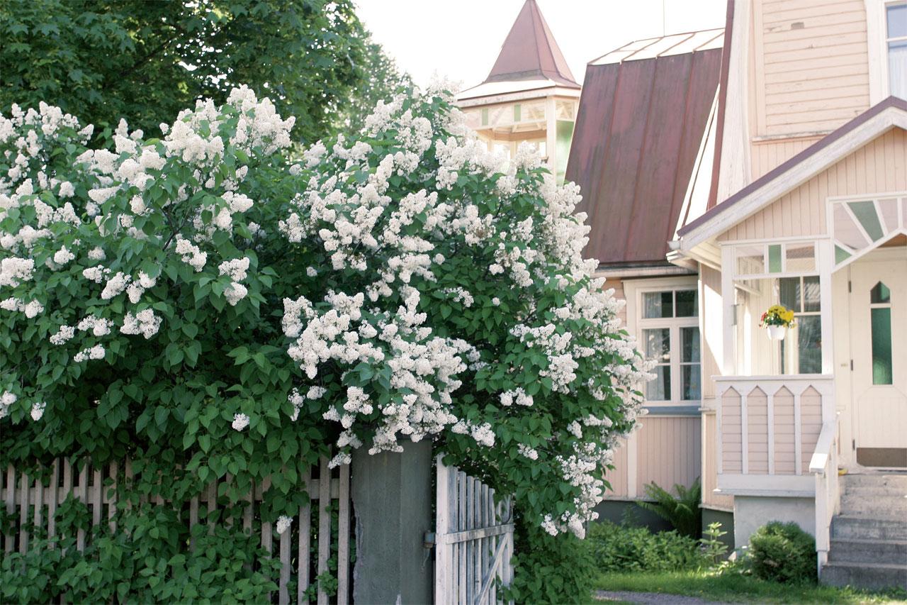 Valkoinen sisääntulo on valoisa ja raikas, sillä vaalea väri luo avaran, etääntyvän tunnelman.