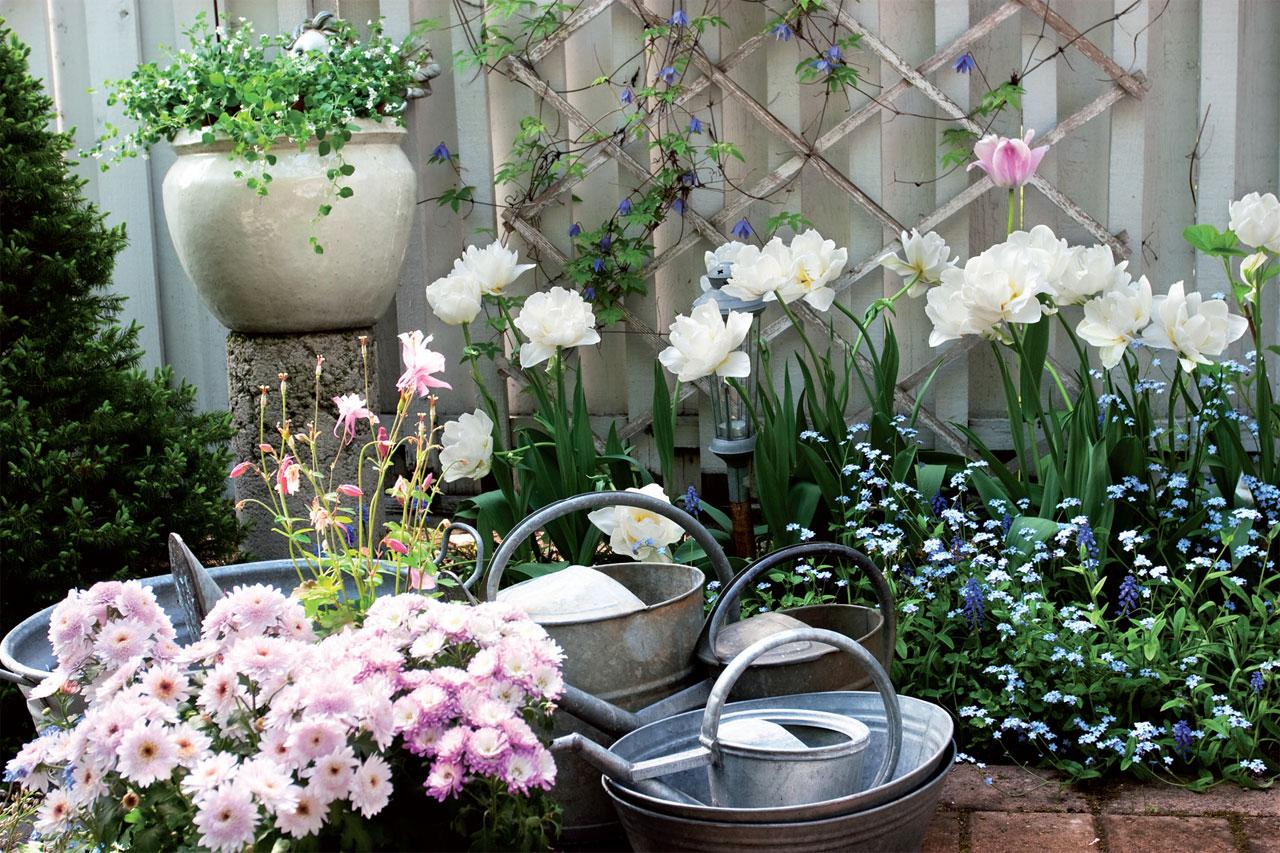 Vierekkäisten värien vaikutelmat voivat joko voimistua tai heiketä erilaisten kontrasti-ilmiöiden vuoksi. Esimerkiksi puutarhan tumma tausta saa sen edessä olevat kukat näyttämään vaaleammilta, vaalea tausta taas tummentaa kukkia.