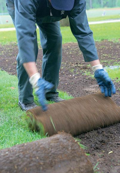 Siirtonurmi voidaan asentaa myös vanhan nurmikon päälle.