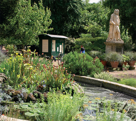 Carl von Linné teki Chelsea Physic Gardeniin useita vierailuja 1730-luvulla.