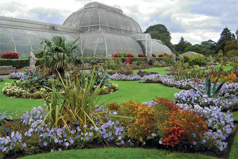 Palmutalo on yksi Kew'n mahtavista kasvihuoneista.