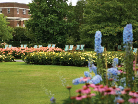 Laajat nurmikentät kattavat suurimman osan Regent's Parkista, mutta Queen Mary's Gardenin kukkaloisto palkitsee kävijän.