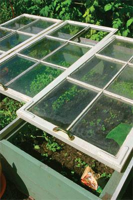 Kasvilava on tärkeä muistaa tuulettaa, sillä pienessä tilassa lämpö kohoaa helposti tukahduttavaksi.