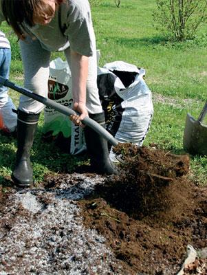 Suosi sijoituslannoitusta, jossa lannoitteet annostellaan kasvin juuriston ulottuville joko maahan tehtyihin koloihin tai istutuskuoppaan.