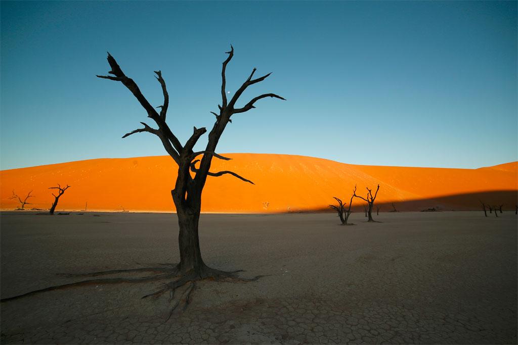Deadvlein aavikko