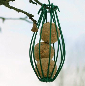 Lintujen talviruokinta. Siemenpalloteline