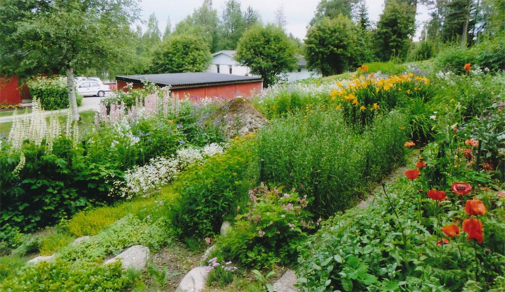 Raati halusi valinnallaan kannustaa pohjoisen puutarhoja mukaan Avoimet puutarhat -tapahtumaan.