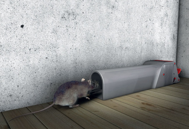NoSee - No Touch -hiirenloukku