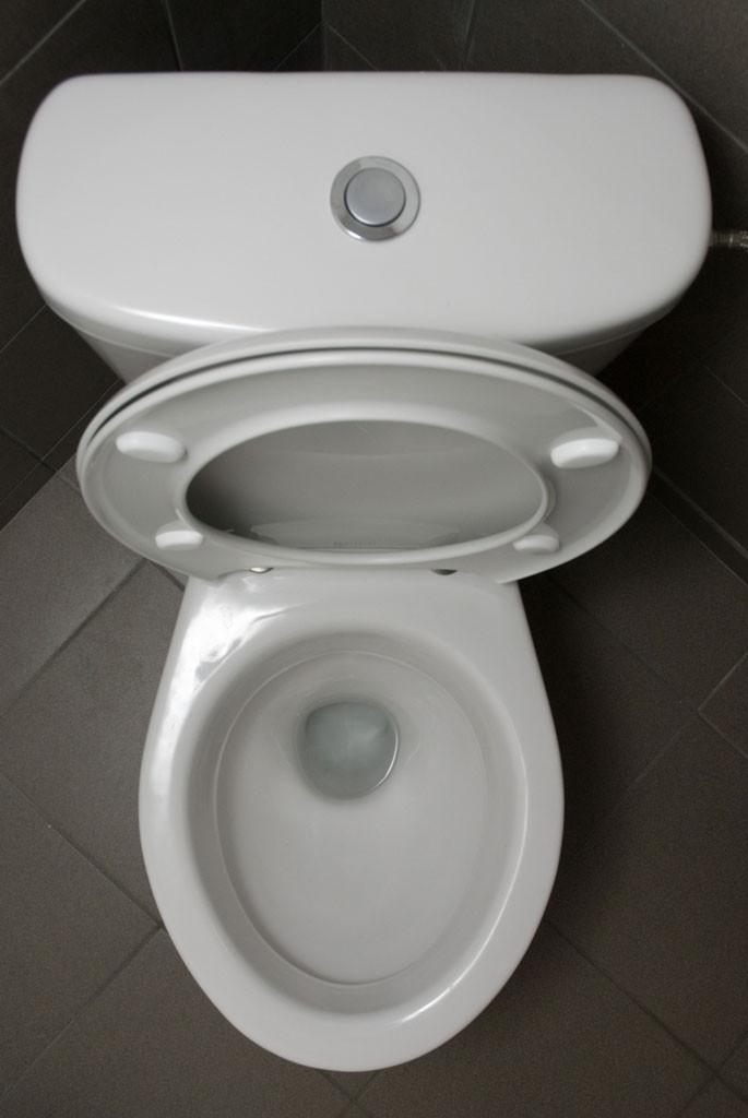 vessa ja hygienia