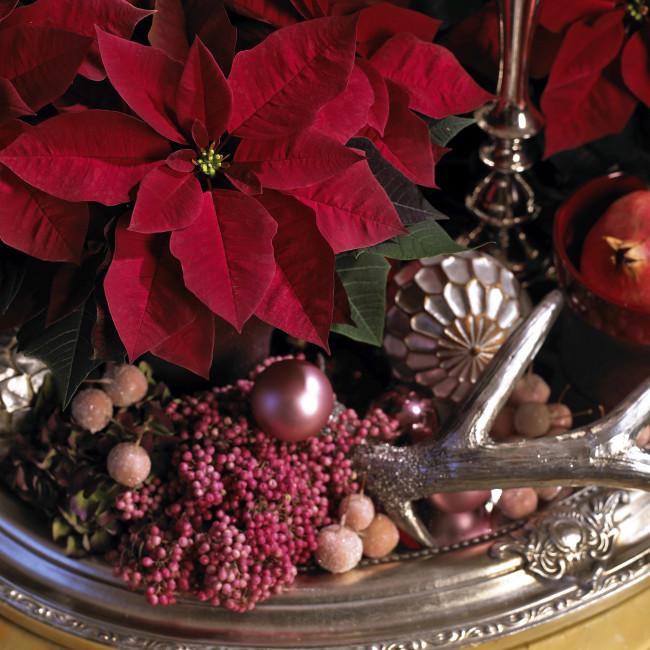 Kukka-asetelmissa voi hyödyntää joulukoristeita. Kuva: Kauppapuutarhaliitto