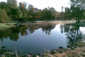 Kumpulan Kasvitieteellinen Puutarha Kutsuu Suomela Jotta