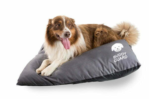 BuddyGuard_Pillow_M_Dog
