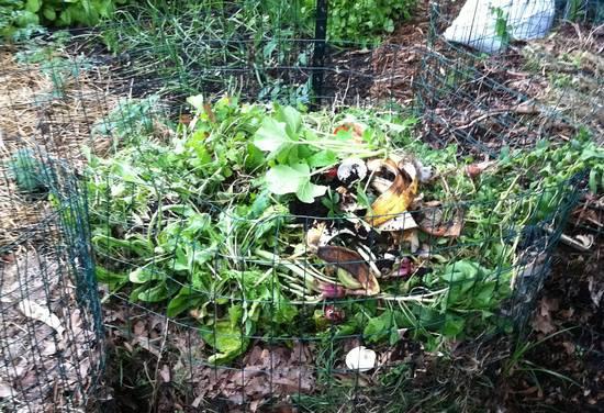 komposti_2
