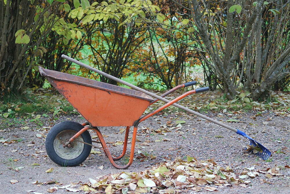 wheelbarrow-523784_1920