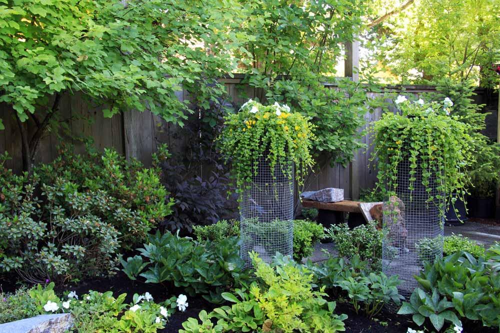 Kasvit muokkaavat pihan tunnelman