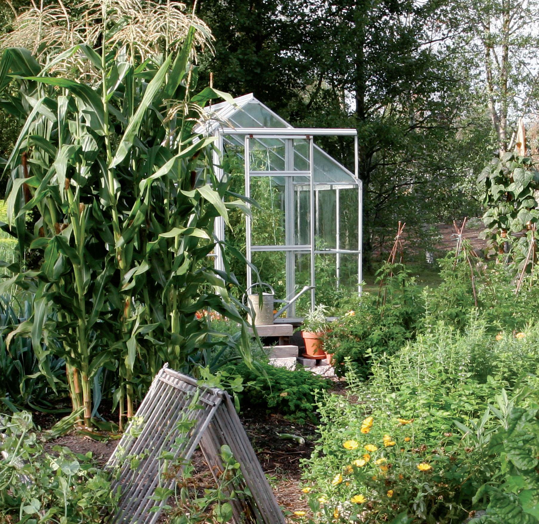 Vuoroviljely on hyväksi maaperälle