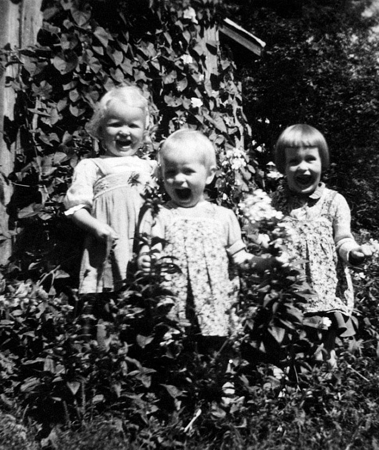Vuosikymmeniä sitten suuri osa suvusta vietti kesiään mökillä. Jokaisella lapsella oli puutarhassa itsensä mukaan nimetty puu.