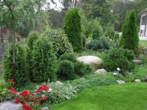 Hyvässä mullassa kasvit viihtyvät