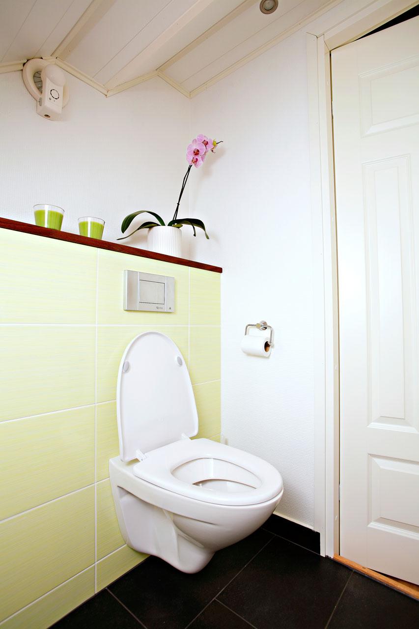 IDO Mosaik-istuimessa on automaattinen wc-raikastin ja pehmeästi sulkeutuva kansi. Mintunvihreät seinälaatat Pukkilan.