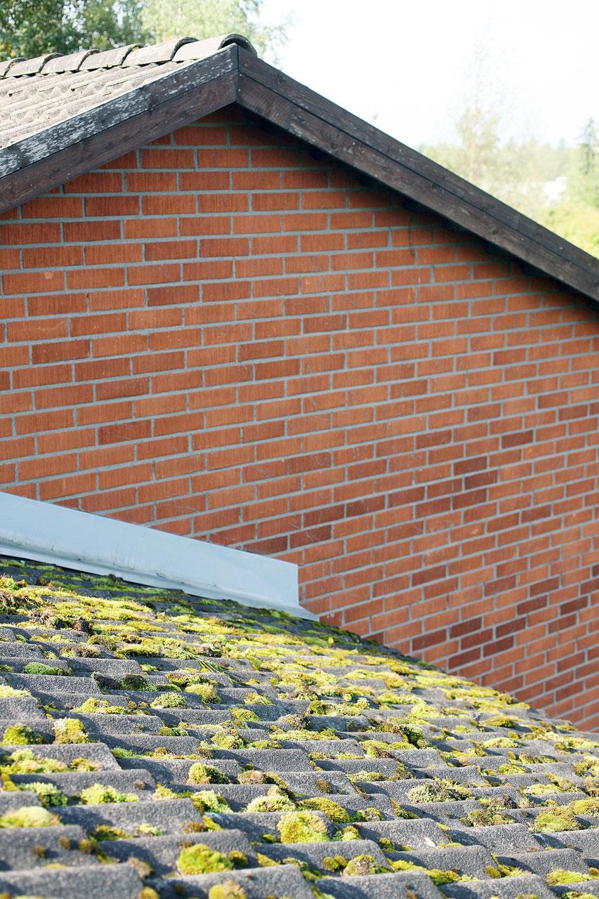 Rivitalon katto on vuosien varrella saanut rauhassa hankkia sammalpeitteen.