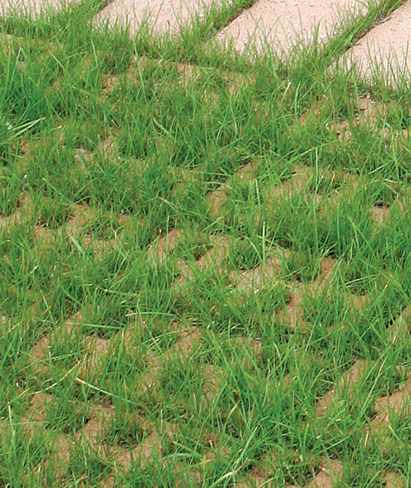 Puutarha, Ajan saatossa reikäkiviä ei juurikaan erota nurmiheinien alta.