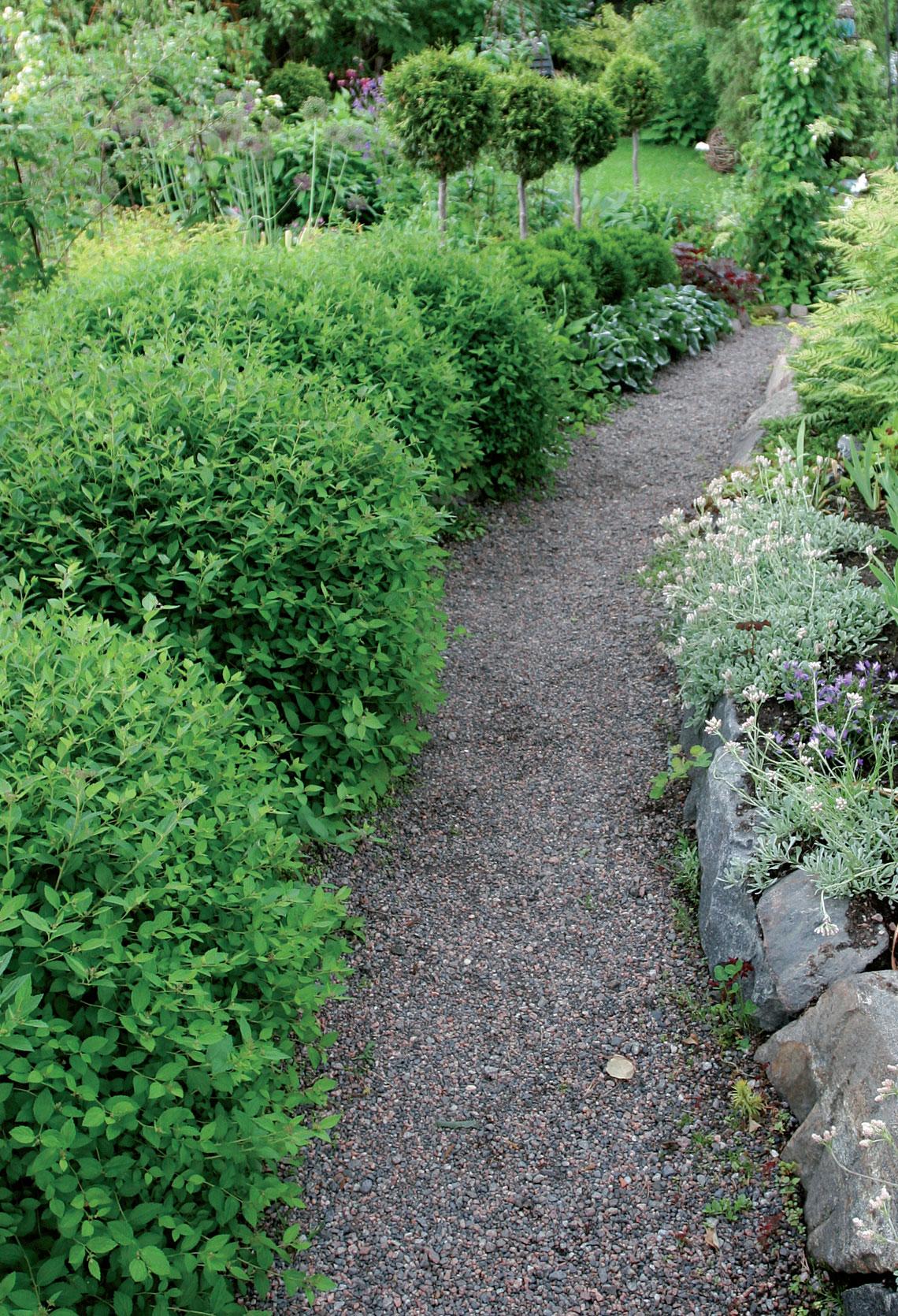 Puutarha, Kivituhkapolku tai perinteinen hiekkakäytävä vaatii materiaalin lisäystä aika ajoin.