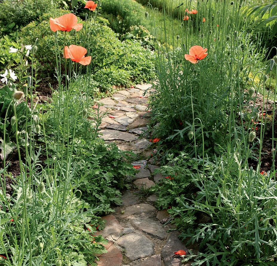 Puutarha, Valitse luonnonkivipolkuun vähintään 3–5 cm:n vahvuisia kiviä.