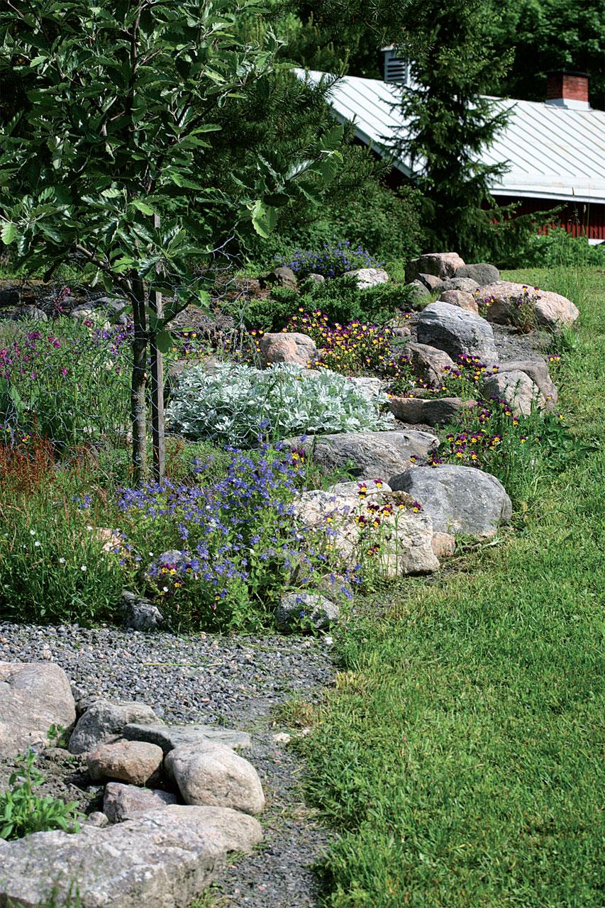 Asettele pyöreät maakivet niin, että ne estävät sadeveden virtaamisen ja ohjaavat kosteuden kasvien juurille.