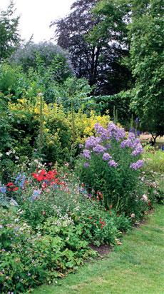 St. James's Parkin kukkakumpujen perennaistutuksissa tyyli on romanttisen villi ja vapaa.