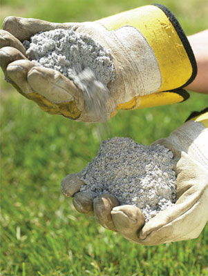 Älä lannoita liikaa, sillä fosfori rehevöittää vesistöjä. Liiallisesta lannoituksesta on haittaa myös kasveille.
